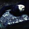 Les belles au bois dormant 02