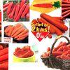la carotte et ses bénéfices