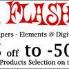 Vente Flash / Sale Flash 24h