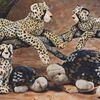 La jaguar lui doit son nom