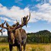 photos du Yukon