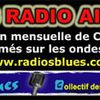 Hit parade Radios Blues JANVIER 2012