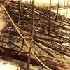 What was the the Tunguska event?