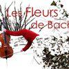 les Fleurs de Bach au théâtre Dunois