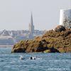 Grands dauphins au large de Saint-Malo