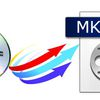How to save/output multi-track MKV from DVD