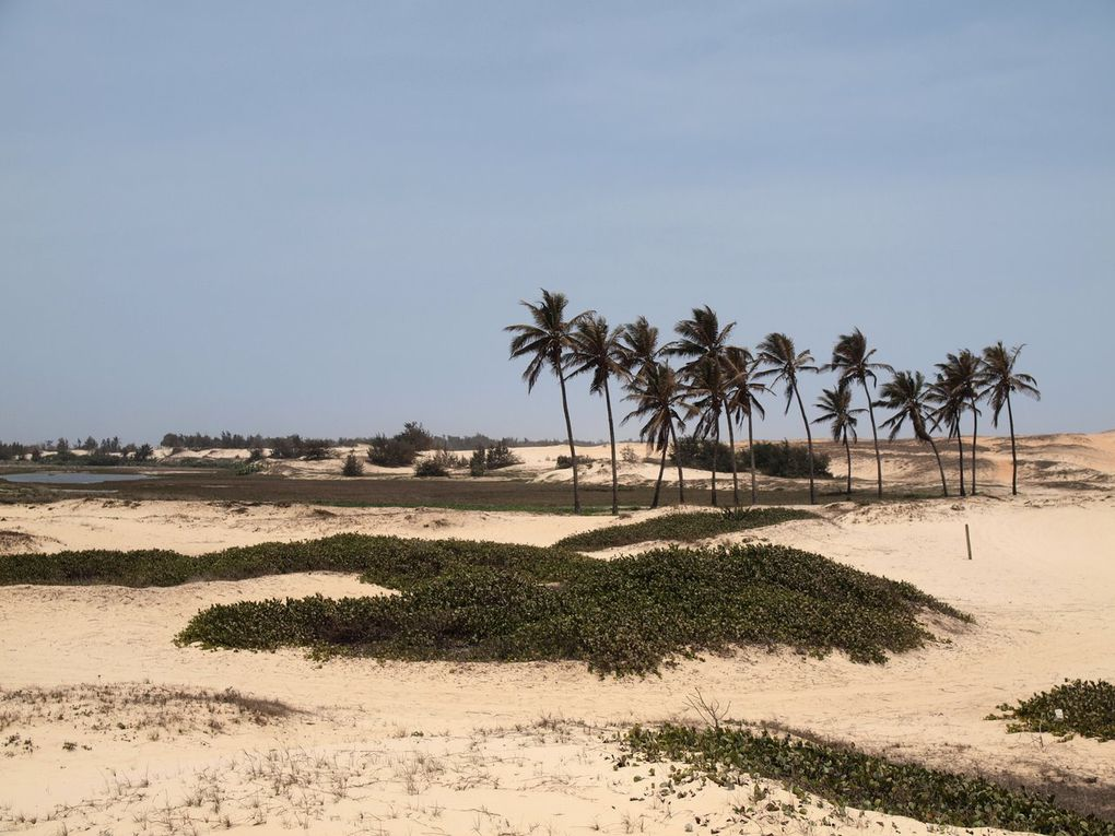 Album - Senegal-Part-2
