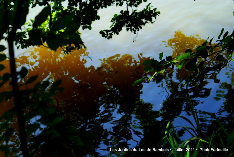 Album - Variations Color+ sur Lac de Bambois