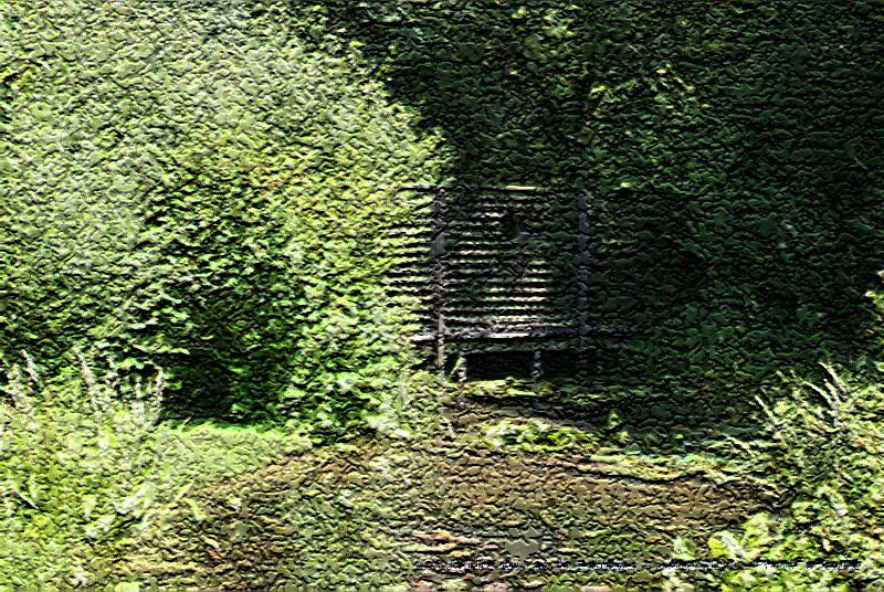 Album - Variations Craquelures sur Lac de Bambois