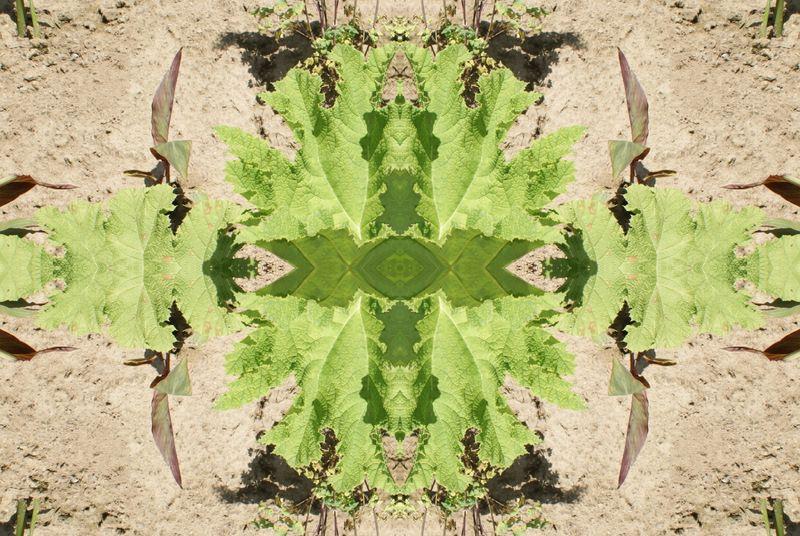 Album - Bambois en Mandalas &amp&#x3B; Kaleidoscopes 01