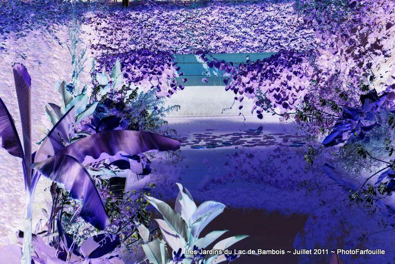 Album - Variations de négatif sur Lac de Bambois
