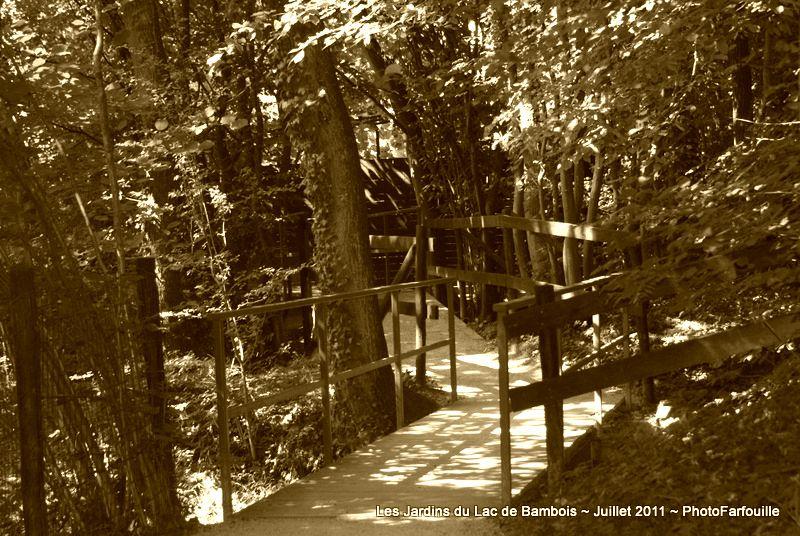 Album - Variations Sepia sur Lac de Bambois