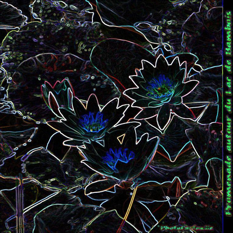 Album - Contours lumineux 1