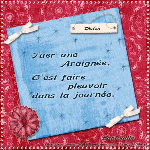 Album - Cartes de Dictons