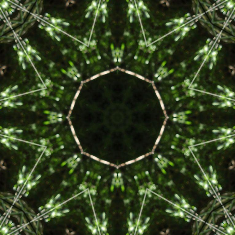 Album - Mandalas &amp&#x3B; Kaleidoscopes 12