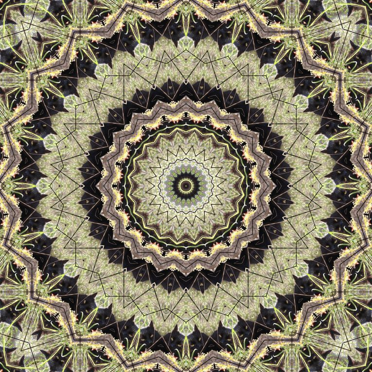 Album - Mandalas &amp&#x3B; Kaleidoscopes 14