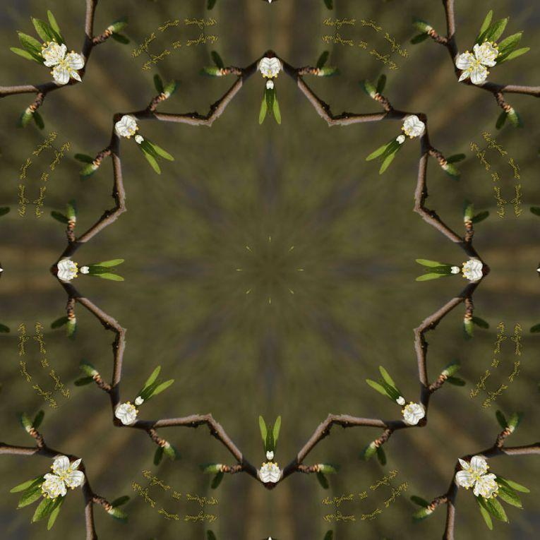 Album - Mandalas &amp&#x3B; Kaleidoscopes 15