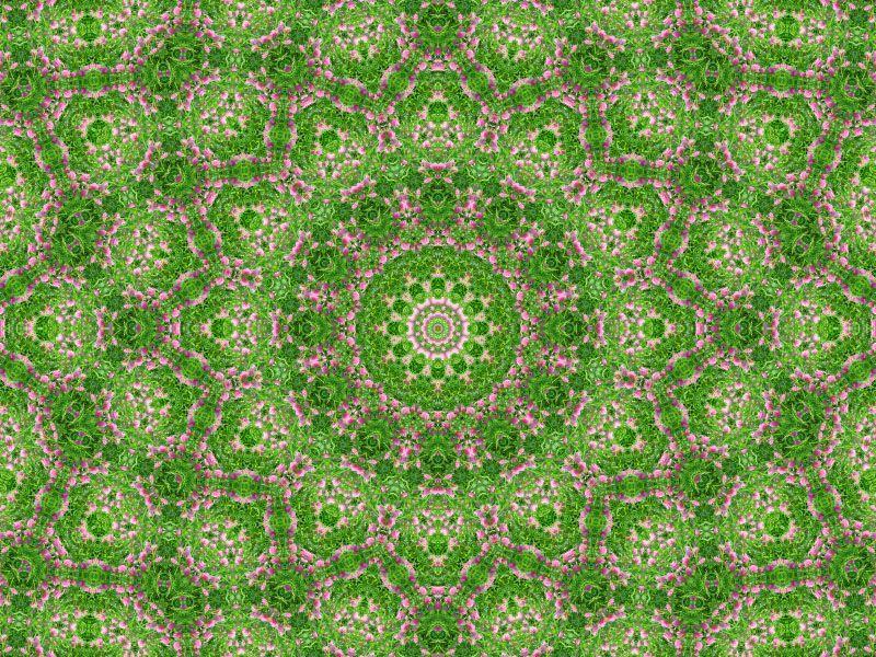 Album - Mandalas &amp&#x3B; Kaleidoscopes 24