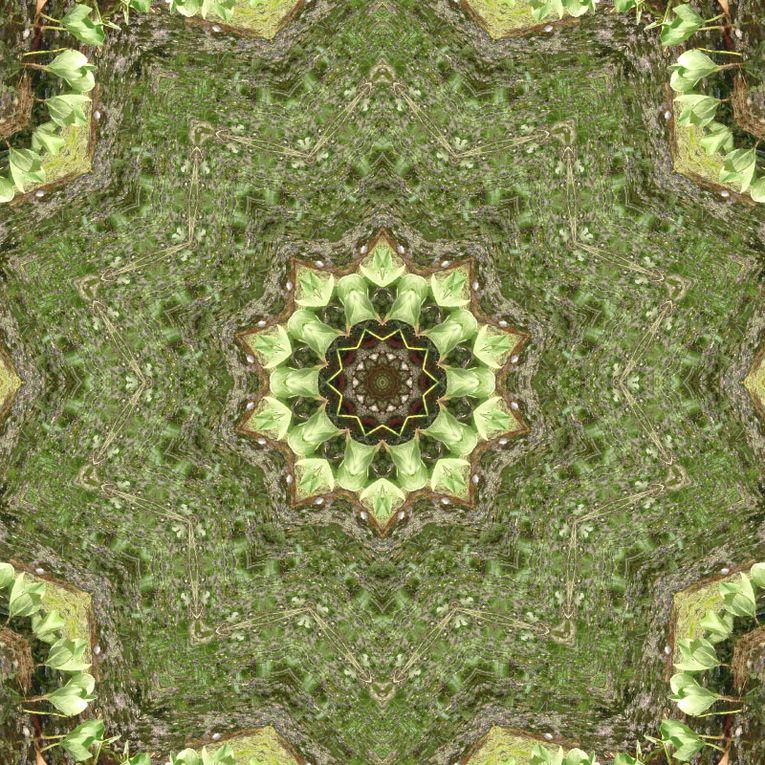 Album - Mandalas &amp&#x3B; Kaleidoscopes 03