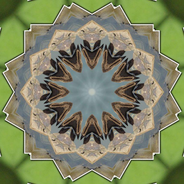 Album - Mandalas &amp&#x3B; Kaleidoscopes 30