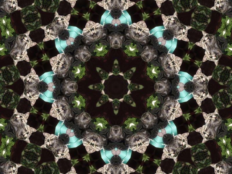Album - Mandalas &amp&#x3B; Kaleidoscopes 39