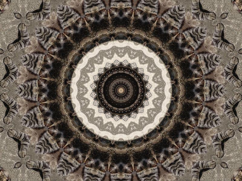 Album - Mandalas &amp&#x3B; Kaleidoscopes 40