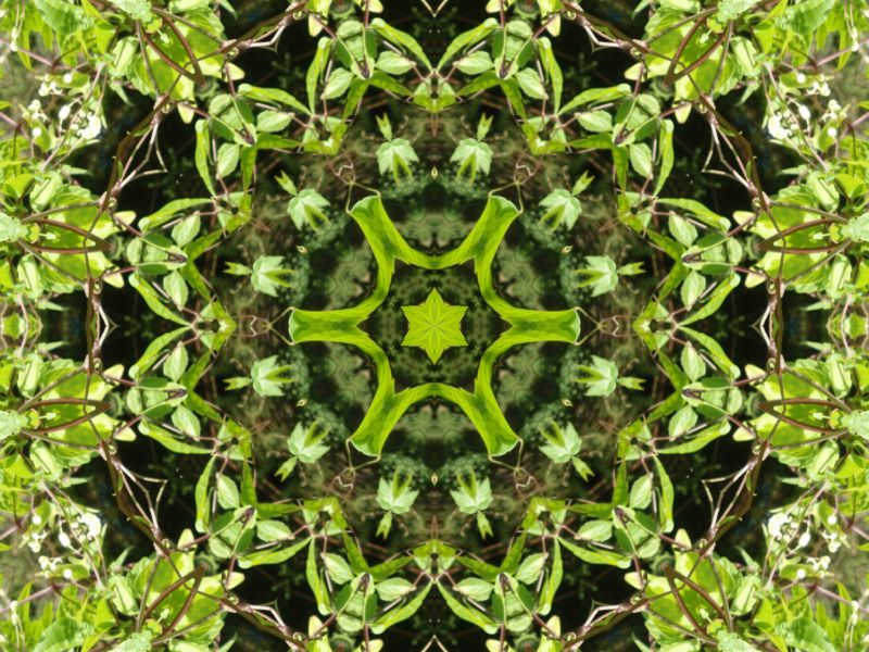 Album - Mandalas &amp&#x3B; Kaleidoscopes 43