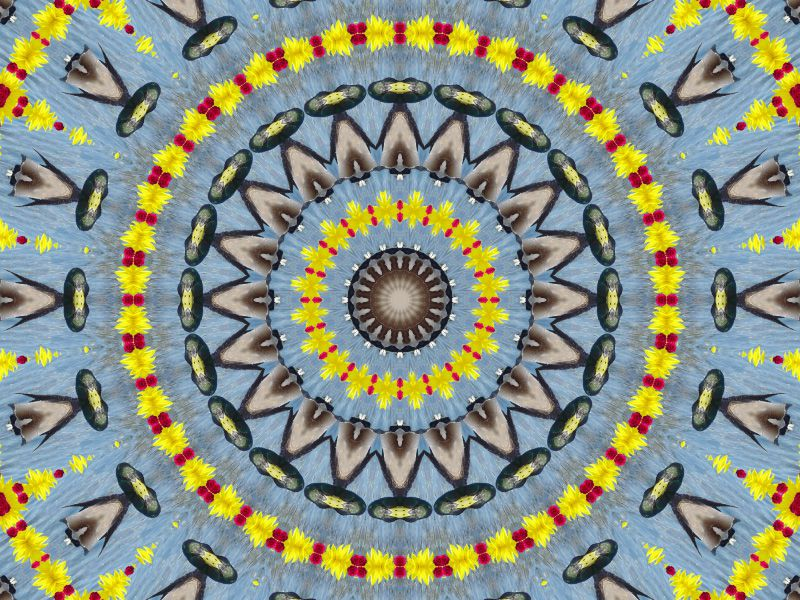 Album - Mandalas &amp&#x3B; Kaleidoscopes 45