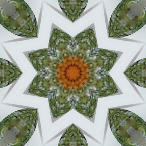 Album - Mandalas &amp&#x3B; Kaleidoscopes 50