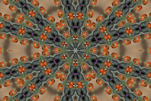 Album - Mandalas &amp&#x3B; Kaleidoscopes 51