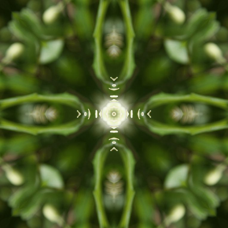 Album - Mandalas &amp&#x3B; Kaleidoscopes 75