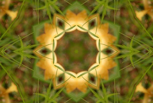 Album - Mandalas &amp&#x3B; Kaleidoscopes 82