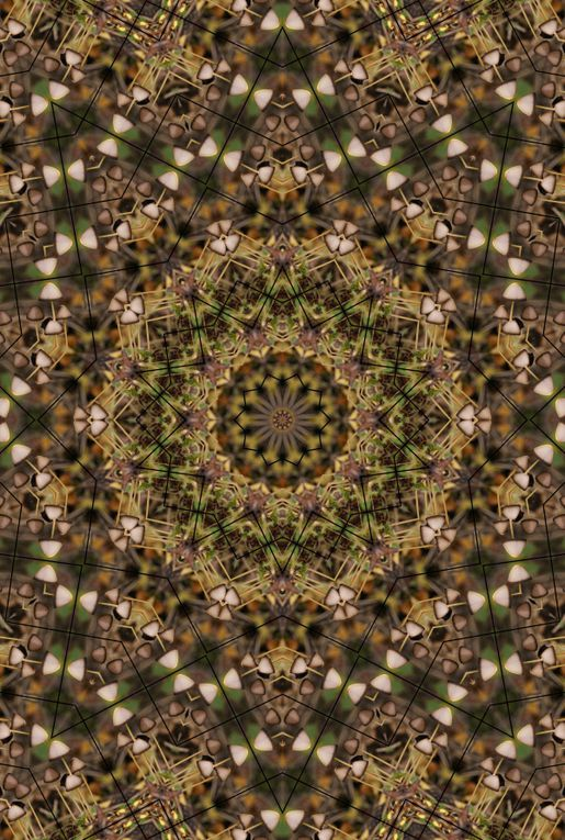 Album - Mandalas &amp&#x3B; Kaleidoscopes 82