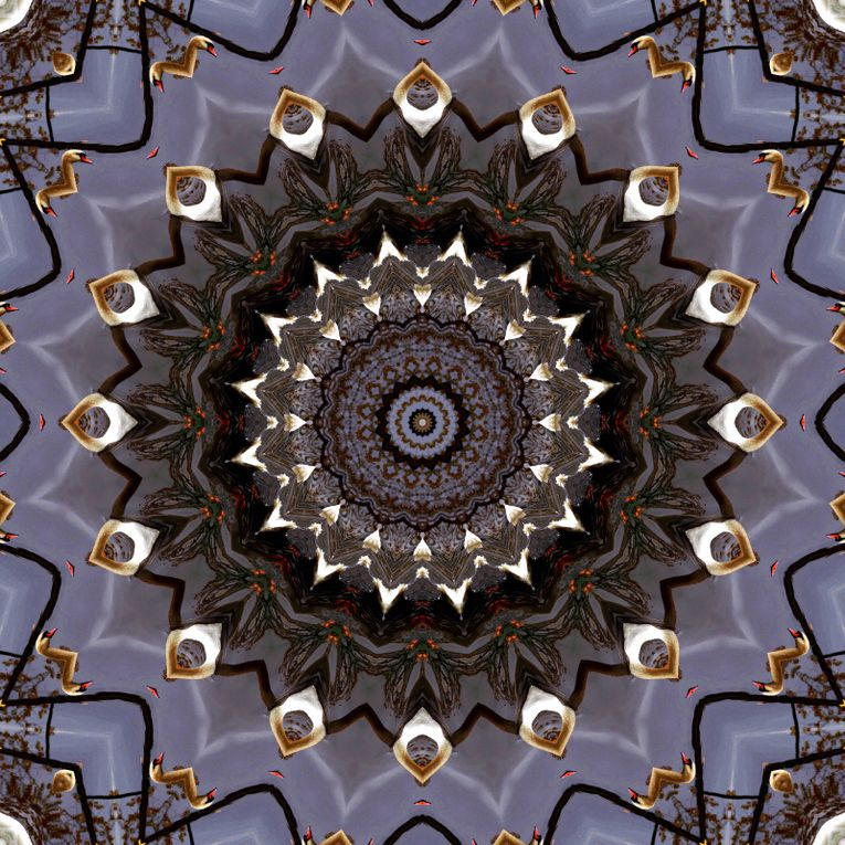 Album - Mandalas &amp&#x3B; Kaleidoscopes 84