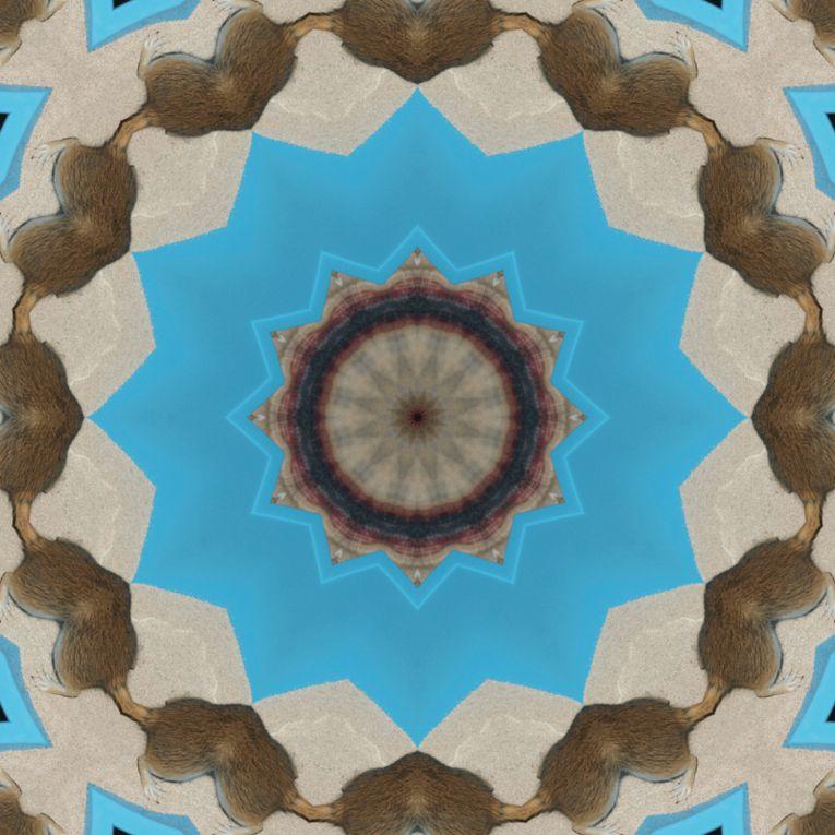 Album - Mandalas &amp&#x3B; Kaleidoscopes 88