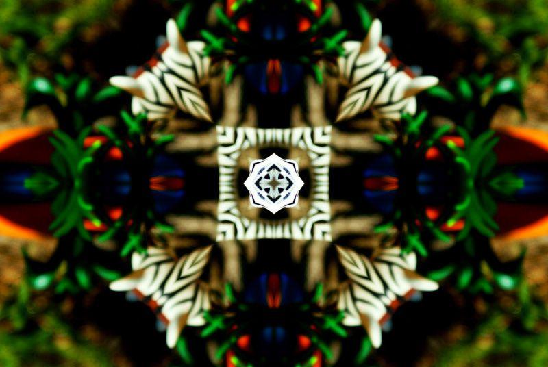 Album - Mandalas &amp&#x3B; Kaleidoscopes 97