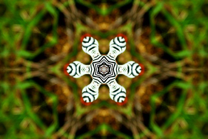 Album - Mandalas &amp&#x3B; Kaleidoscopes 98