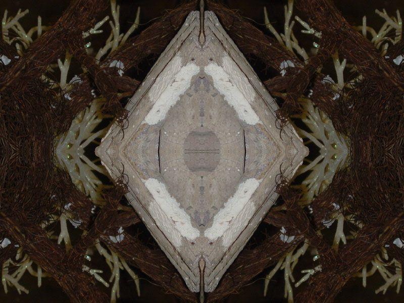 Album - Noël 2010 ~ 02