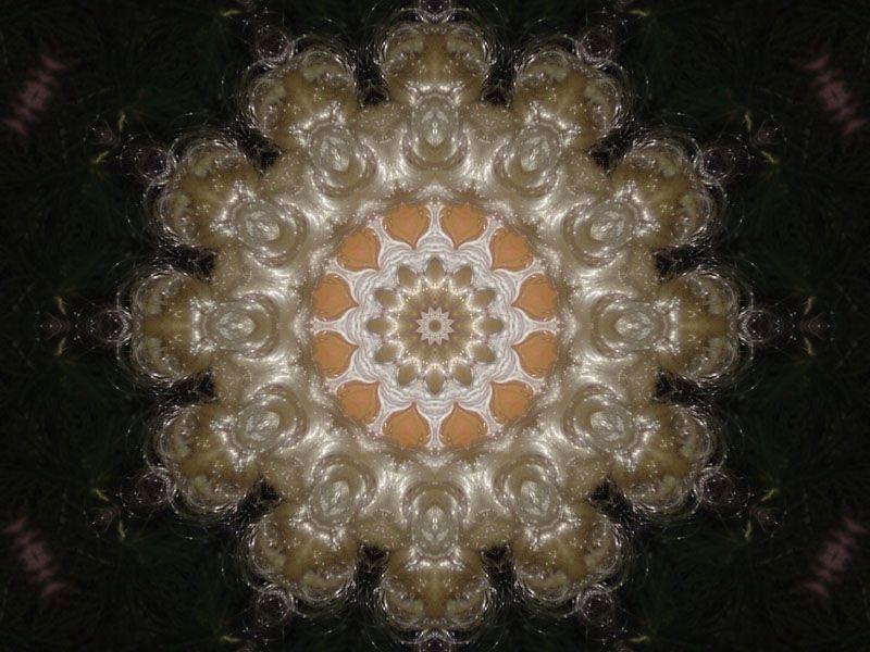 Album - Noël 2010 ~ 15