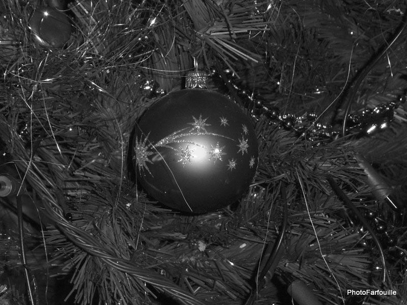 Album - Noël 2010 ~ 17