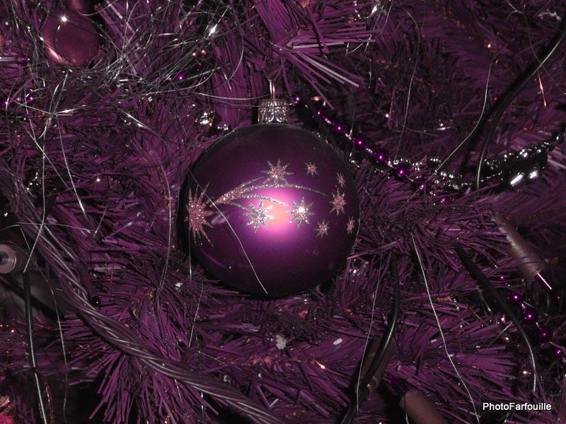 Album - Noël 2010 ~ 22