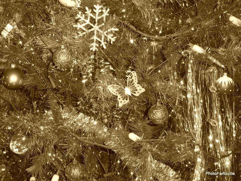 Album - Noël 2010 ~ 24