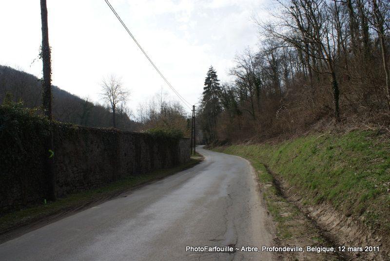 Album - Promenades 14
