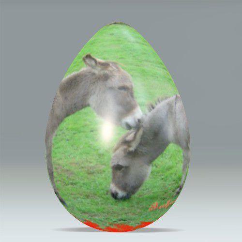 Certaines images sont réalisées grâce aux générateurs des siteshttp://www.dumpr.net/ et http://www.chami.com/html-kit/services/imge/