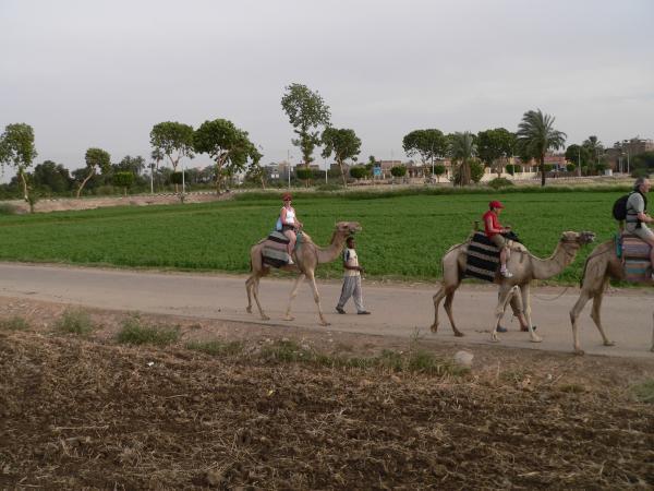 <ul>    <li>Mon voyage en Egypte </li></ul>