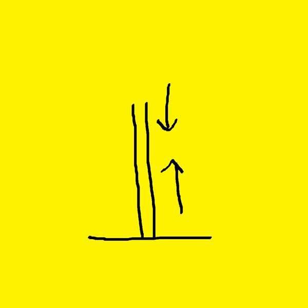 Album - 09-Arbres, fleuves, routes