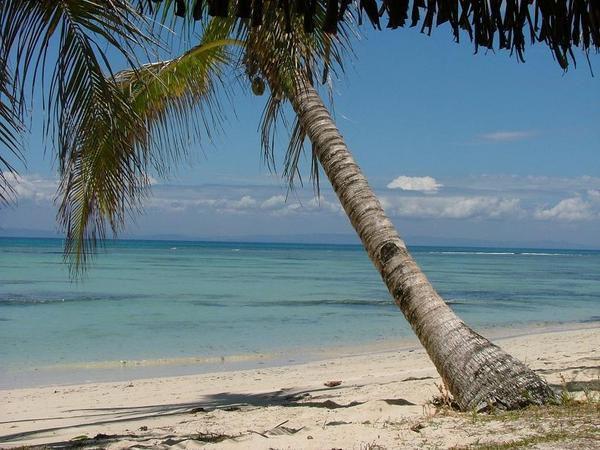 Album - est-Madagascar-2007