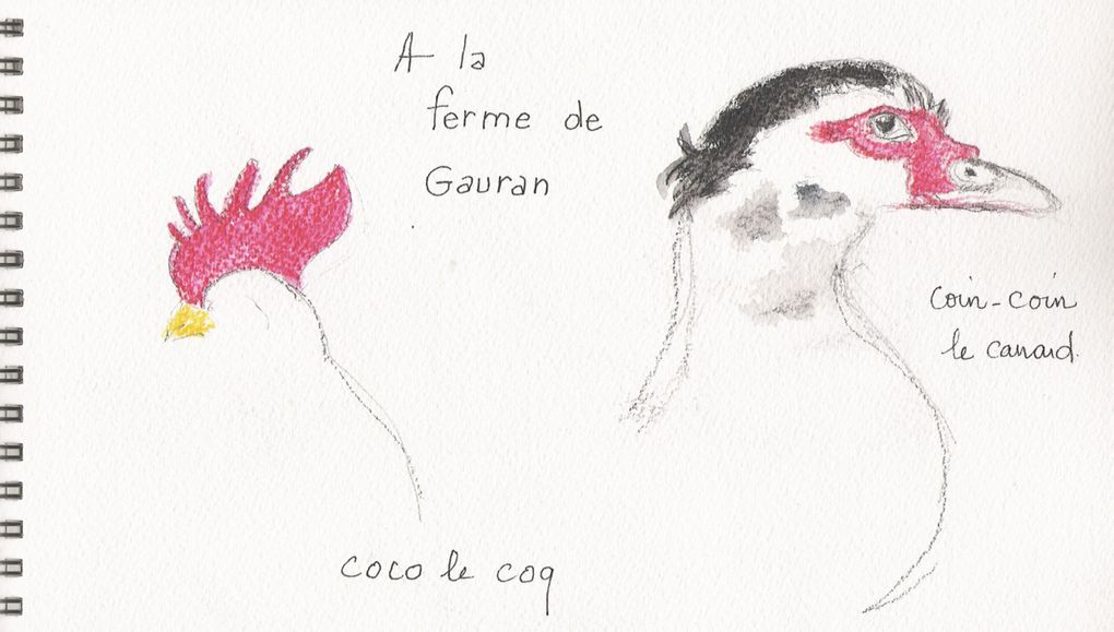 Album - croquis-et-aquarelles