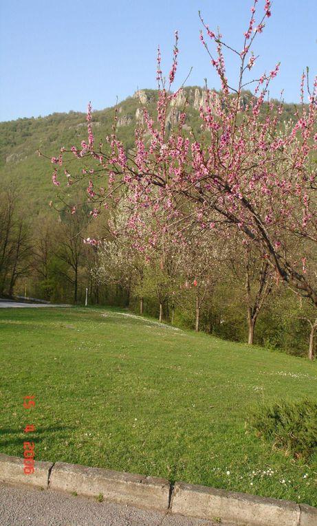 Le village de Lesidren, c&eacute&#x3B;l&egrave&#x3B;bre par sa fabrication de saucissons secs,&nbsp&#x3B;est&nbsp&#x3B;blotti&nbsp&#x3B;sur les pentes Nord de la montagne de Vasiliovska, qui fait partie de la montagne moyenne de Stara Planina . Le village est situ&eacute&#x3B; au
