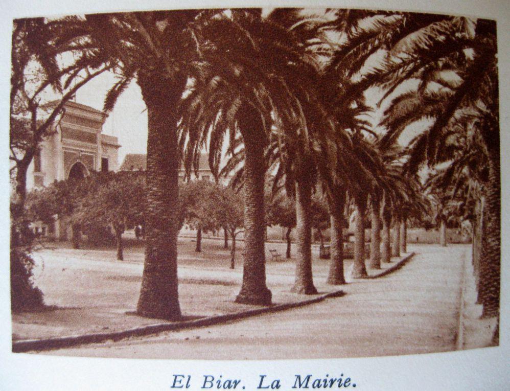 ALGER et sa Région par Antoine CHOLLIER. Editions B. Arthaud à Grenoble. Edition épuisée.MCXXIX.A LOLA, à celle qui fut du voyage, et dans les yeux de qui j'ai vu tous les mirages.